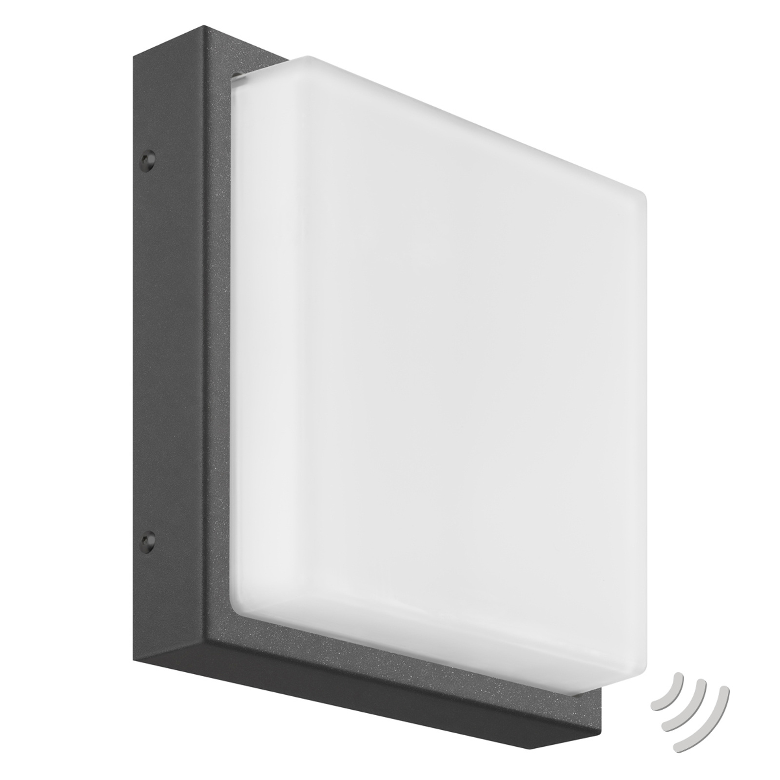 Ernest kantet utendørs LED-vegglampe i grafitt