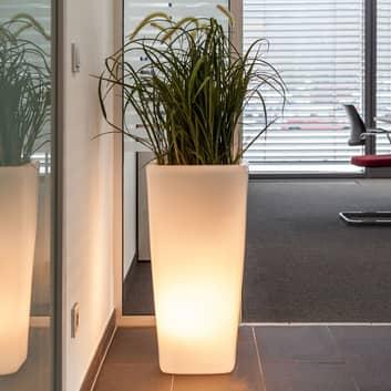 Lámpara Trevia V plantable, blanco translúcido