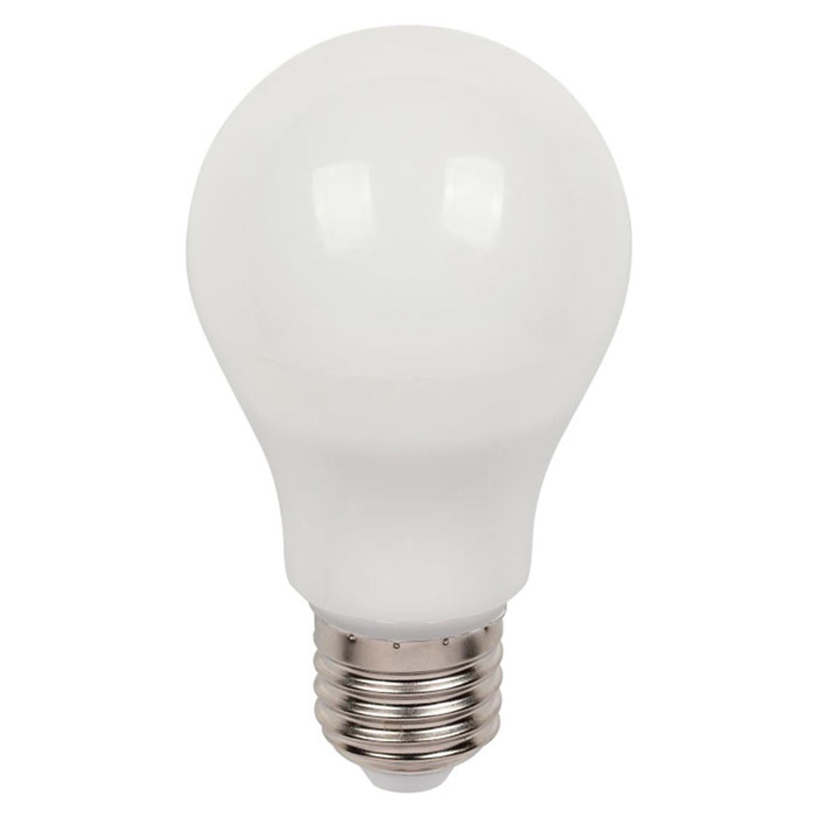 Westinghouse LED-pære E27 9W 3.000K, mat dæmpes