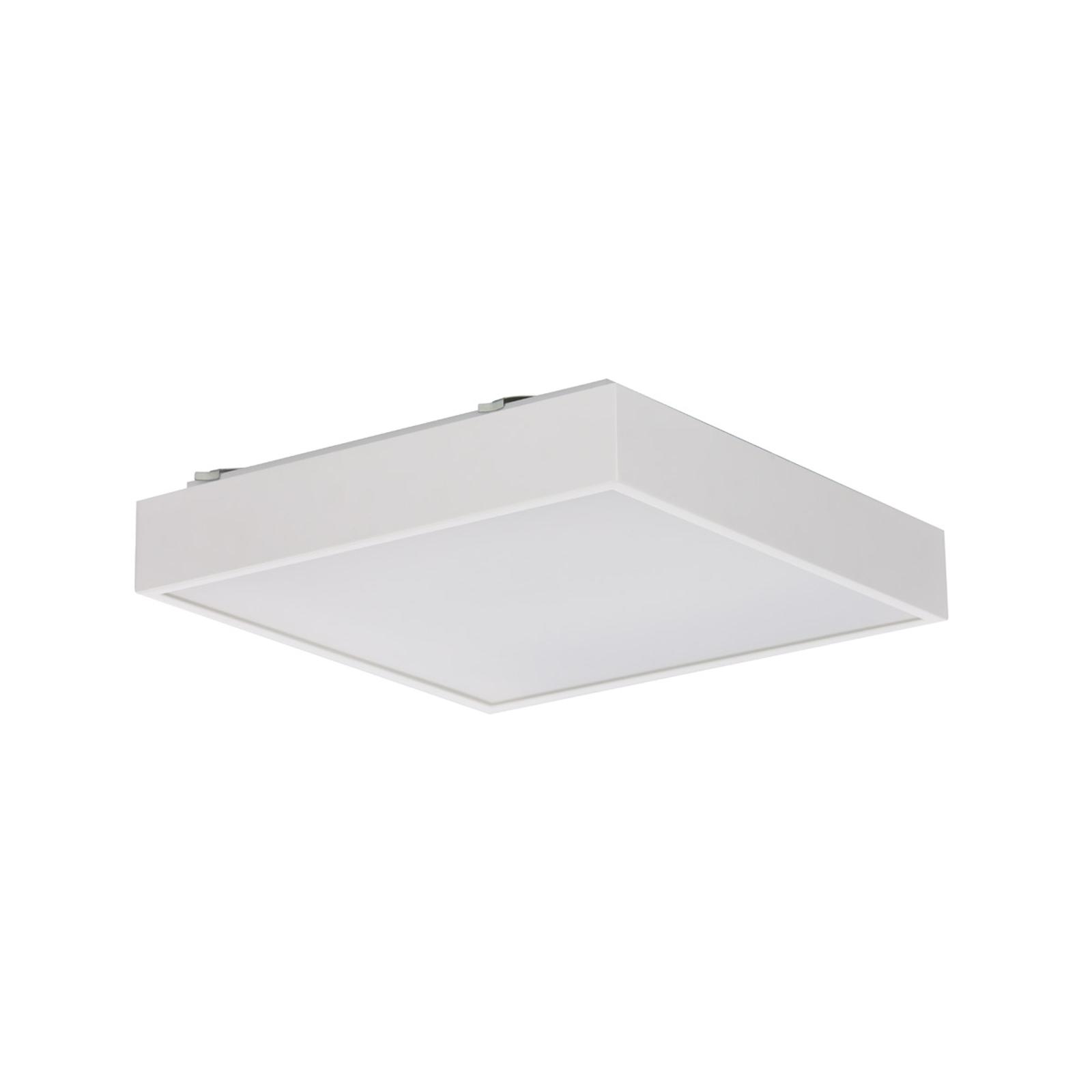 Q4 LED-kattovalaisin valkoinen DALI