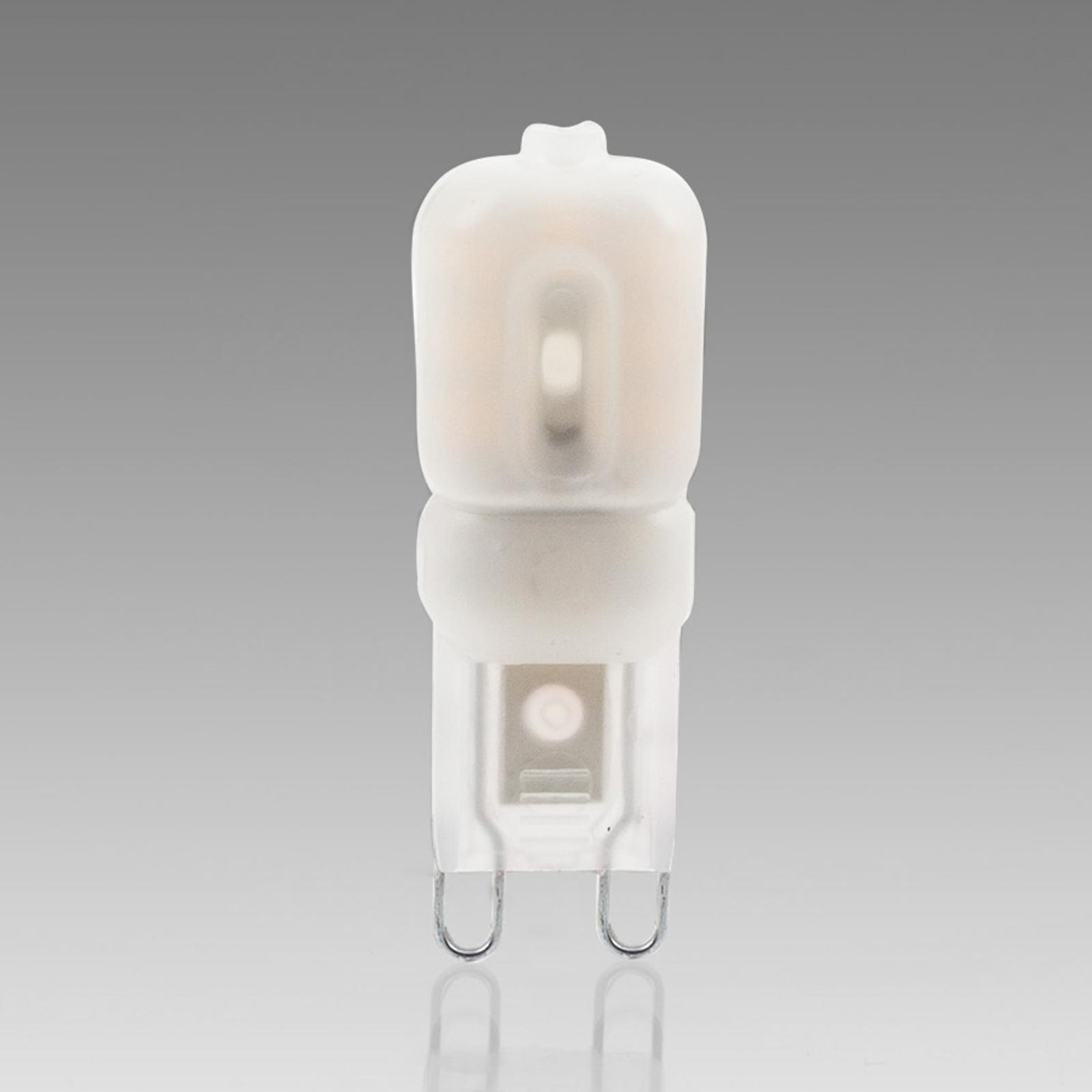 Lampadina a capsula a LED G9 2,5W 830 opalina