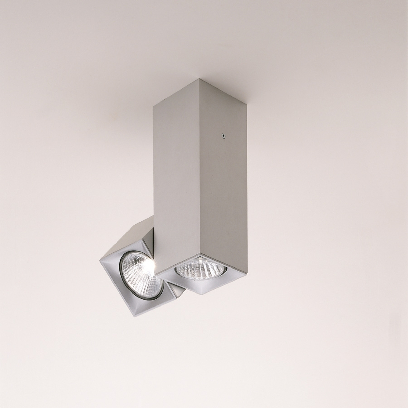 Milan Dau - plafoniera orientabile a 2 luci