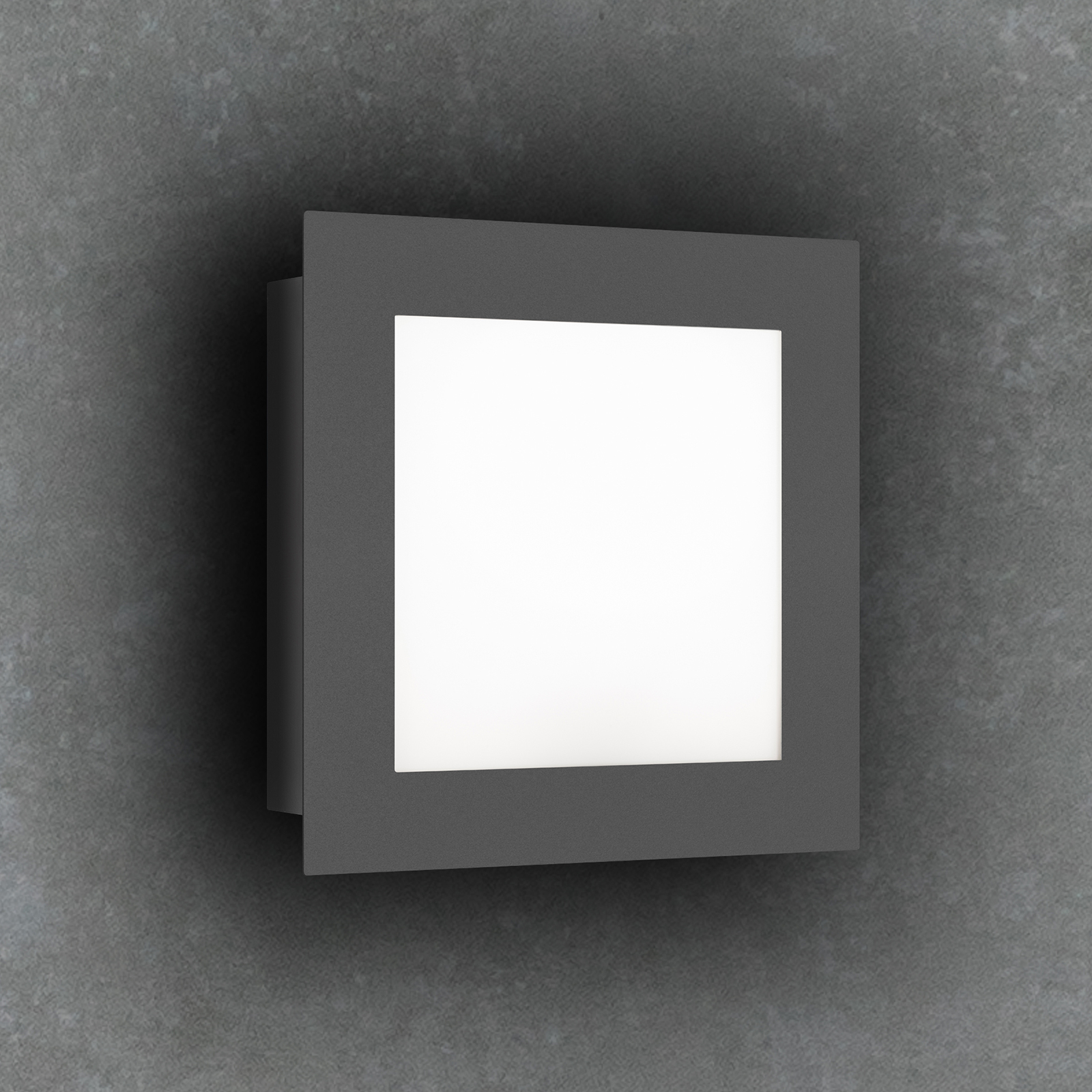 LED-Außenwandleuchte 3007LED, grafit