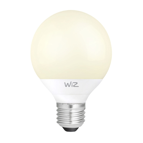 WiZ E27 LED lamp Globe G95 mat 12W 2.700K
