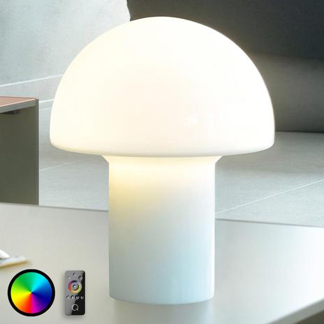 Regulowana lampa stołowa LED Q-Lido z pilotem