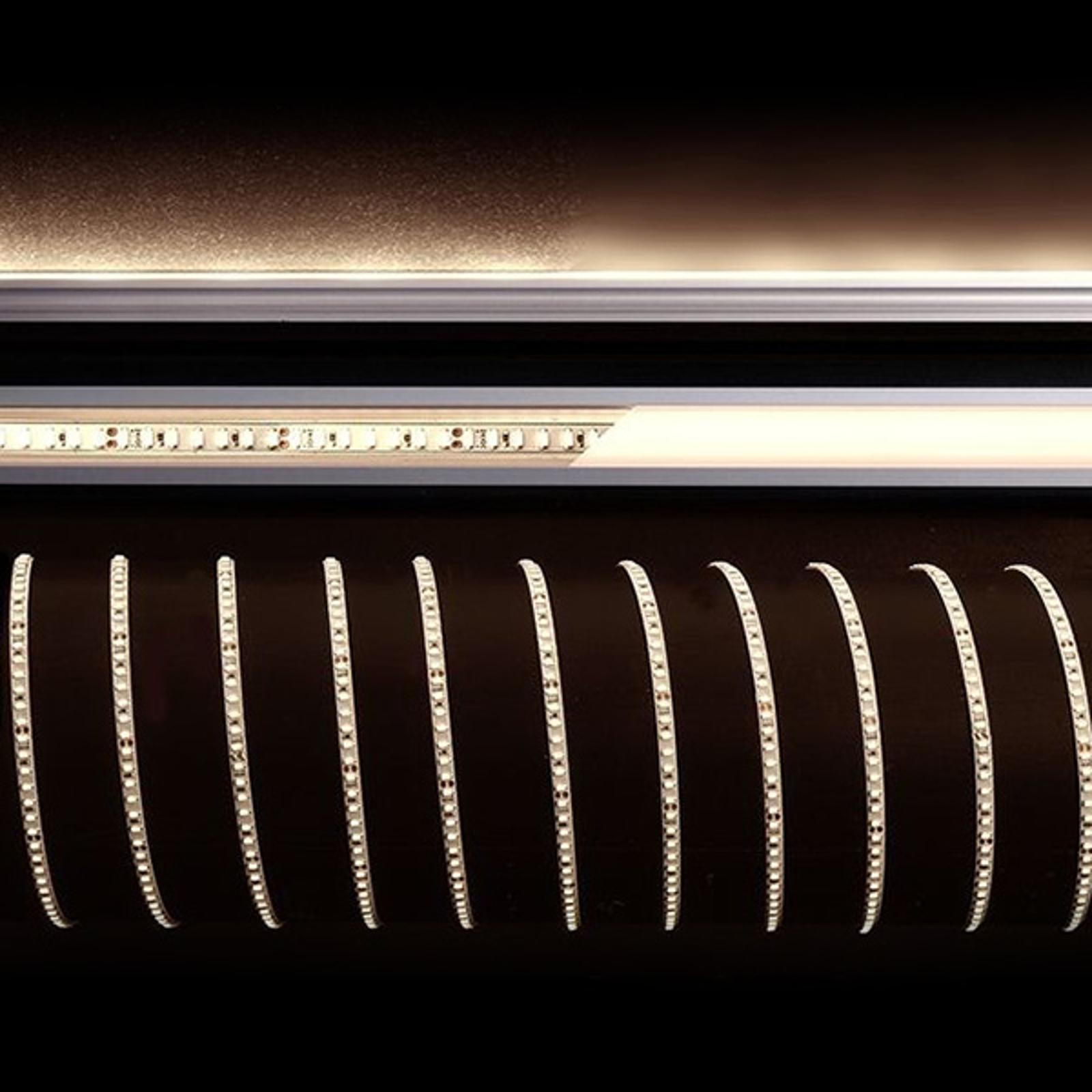 Strip LED flessibile, 45 W, 500x0,4x0,2 cm, 2.700K