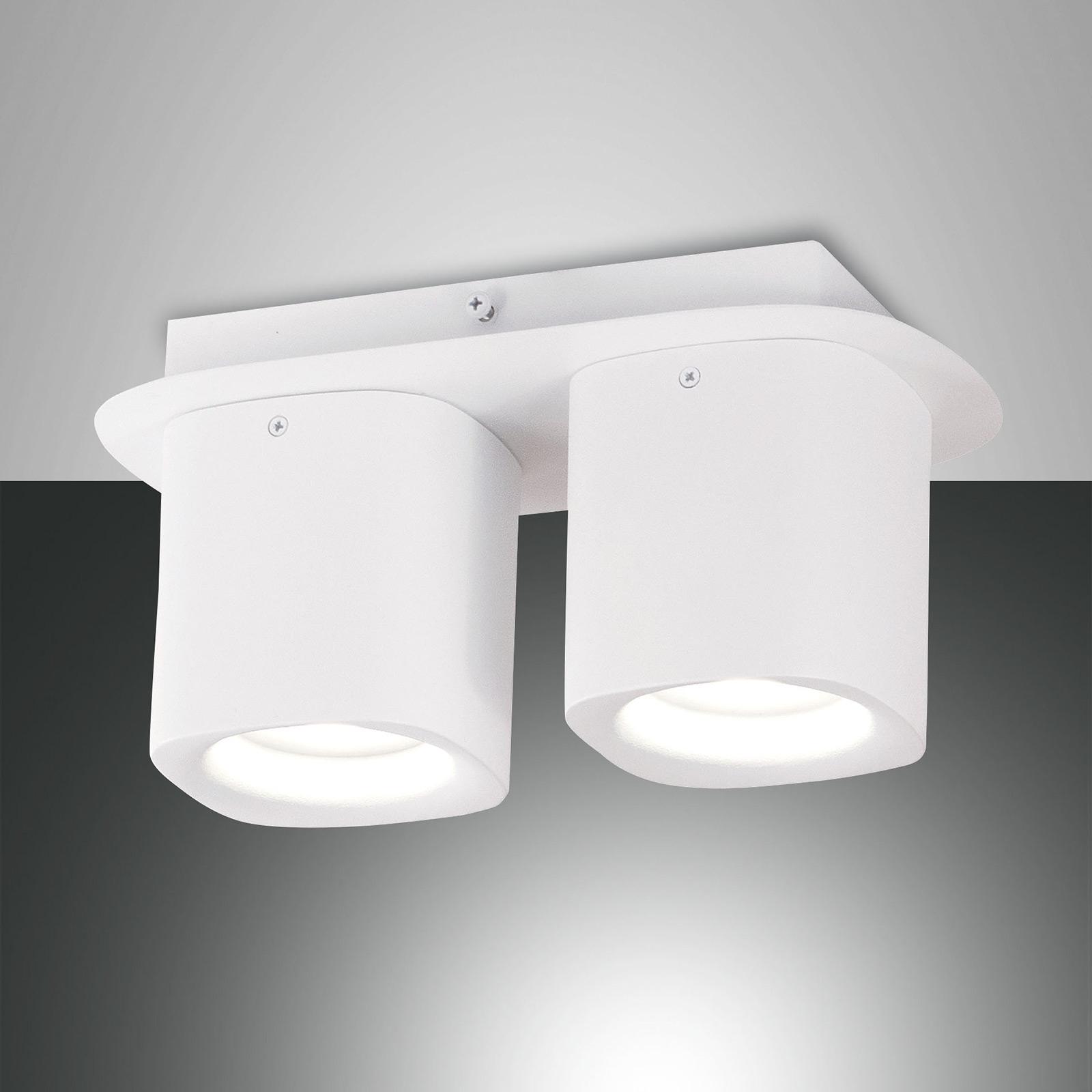 Lampa sufitowa Smooth, 2-punktowa, biała