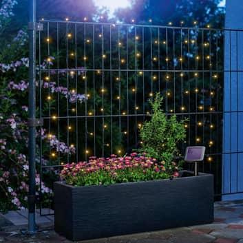 Premium LED-lyskæde, solceller, med 100 LED'er