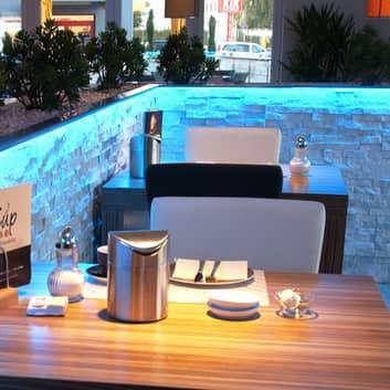 Tira LED flexible 450-630 nm 62 W 500x0,8x0,3 cm