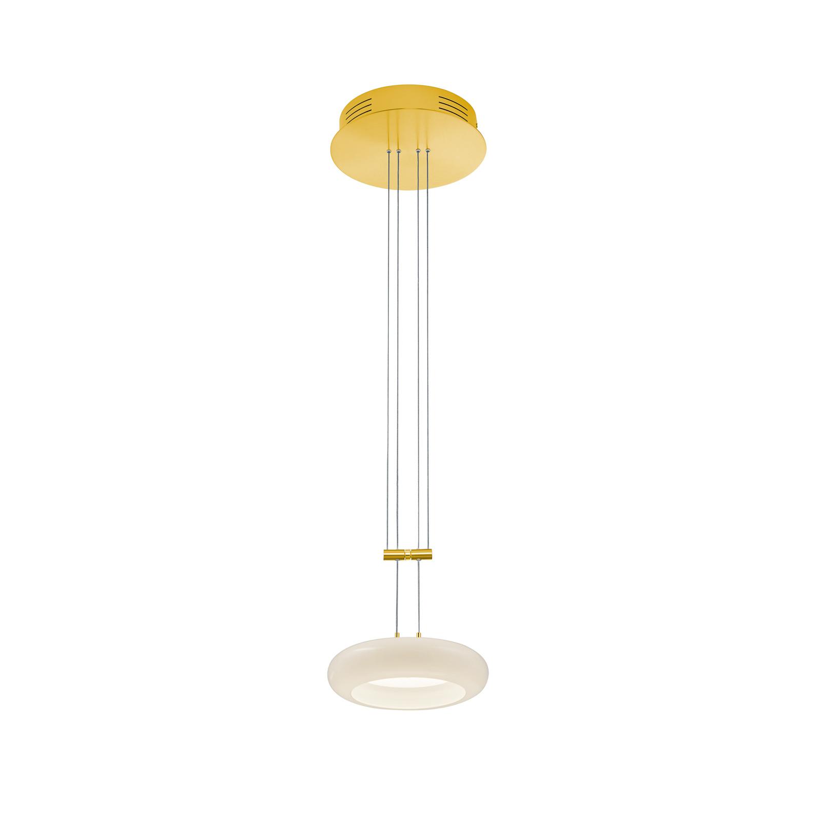 BANKAMP Centa hængelampe 1 lyskilde 20 cm messing
