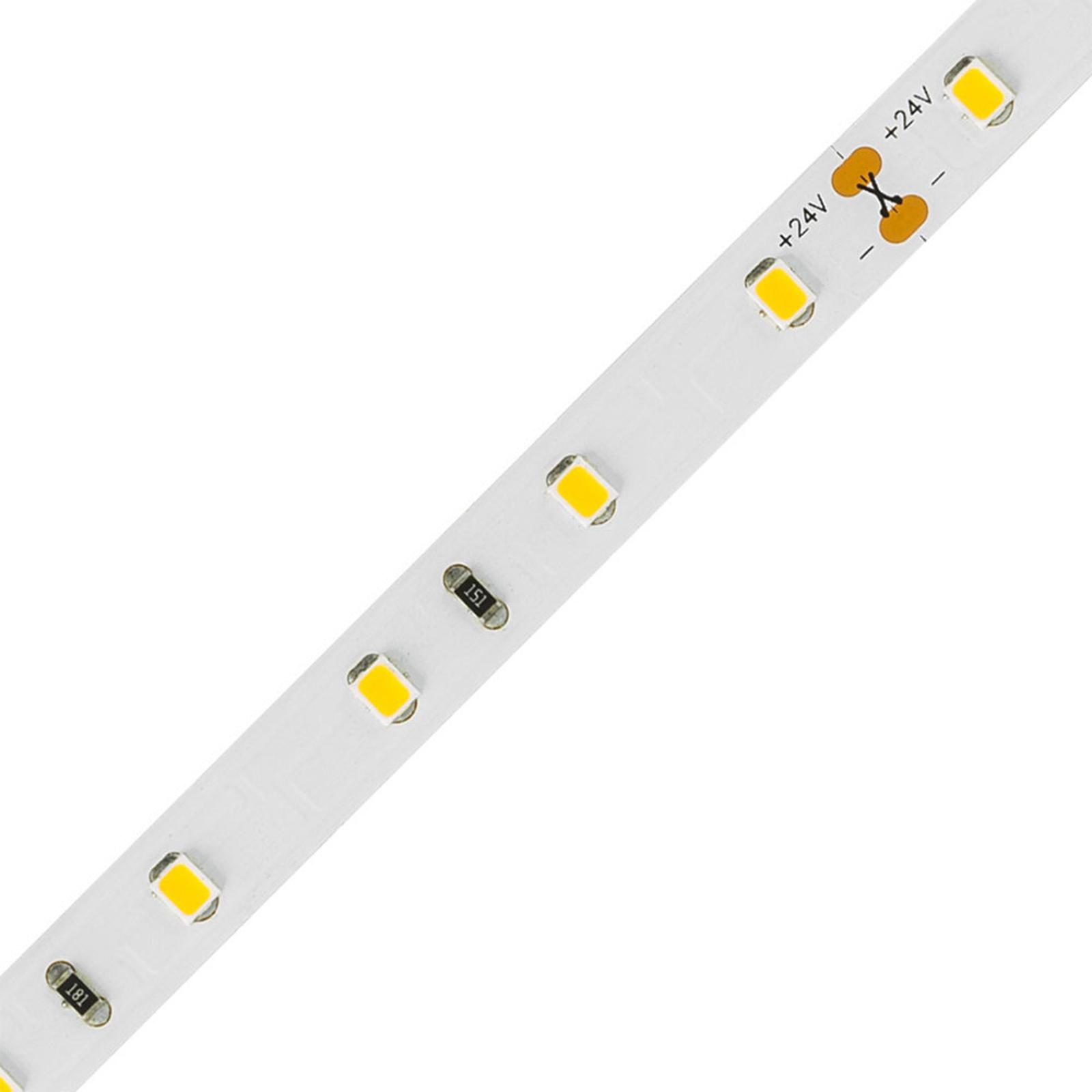 EVN STR2024 LED-list IP20 5 m 24 W 3000K