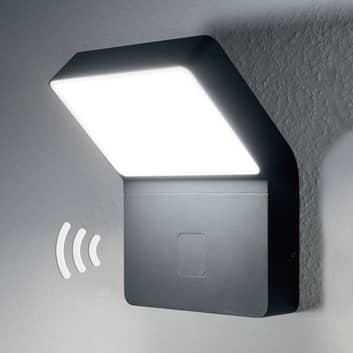 LEDVANCE Endura Style Wall Wide Sensor exterior