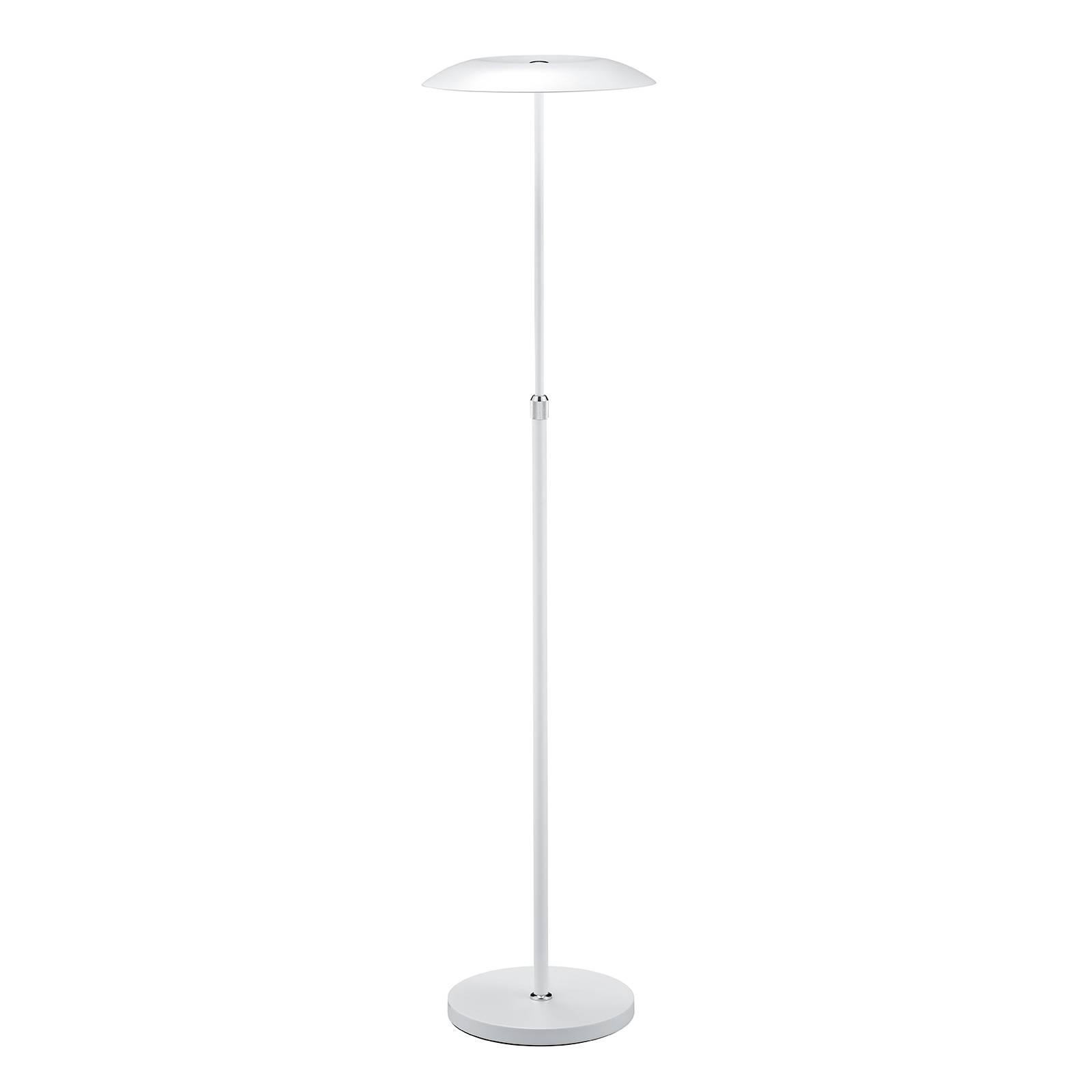 B-Leuchten Curling LED vloerlamp wit