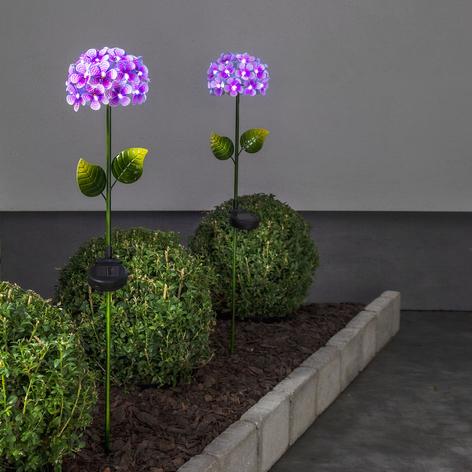 Lámpara solar Hotensia en forma de flor