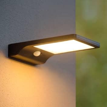 LED-solcellsutomhusvägglampa Basic med sensor