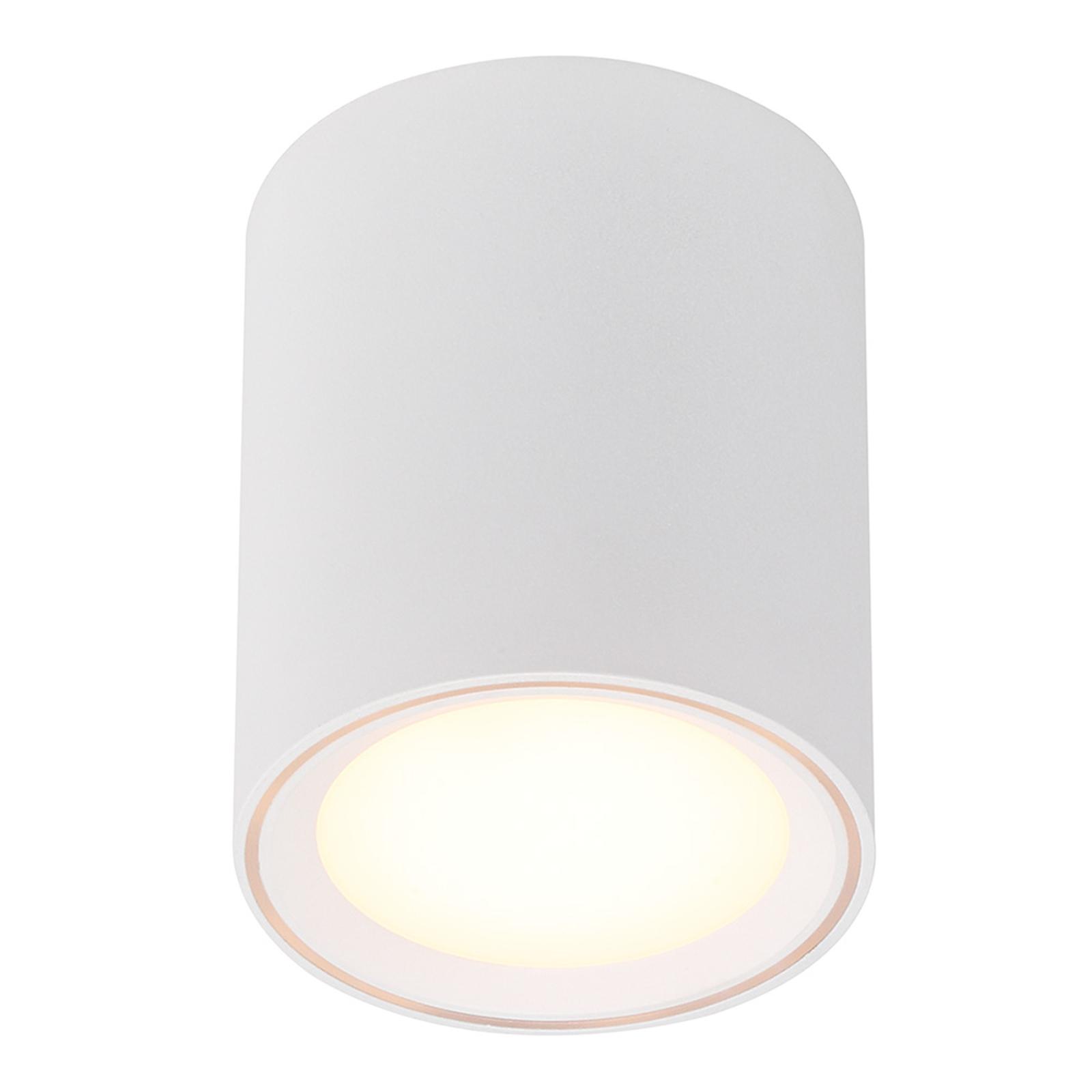 Lampa sufitowa LED Fallon, wysokość 12 cm