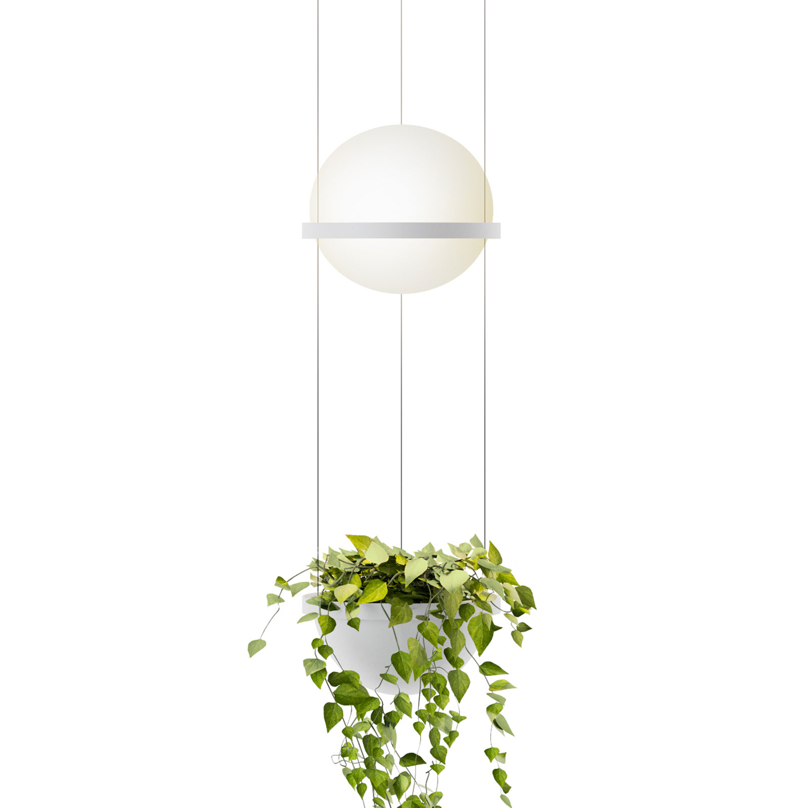 Vibia Palma 3724 suspension, bac à plantes, blanc