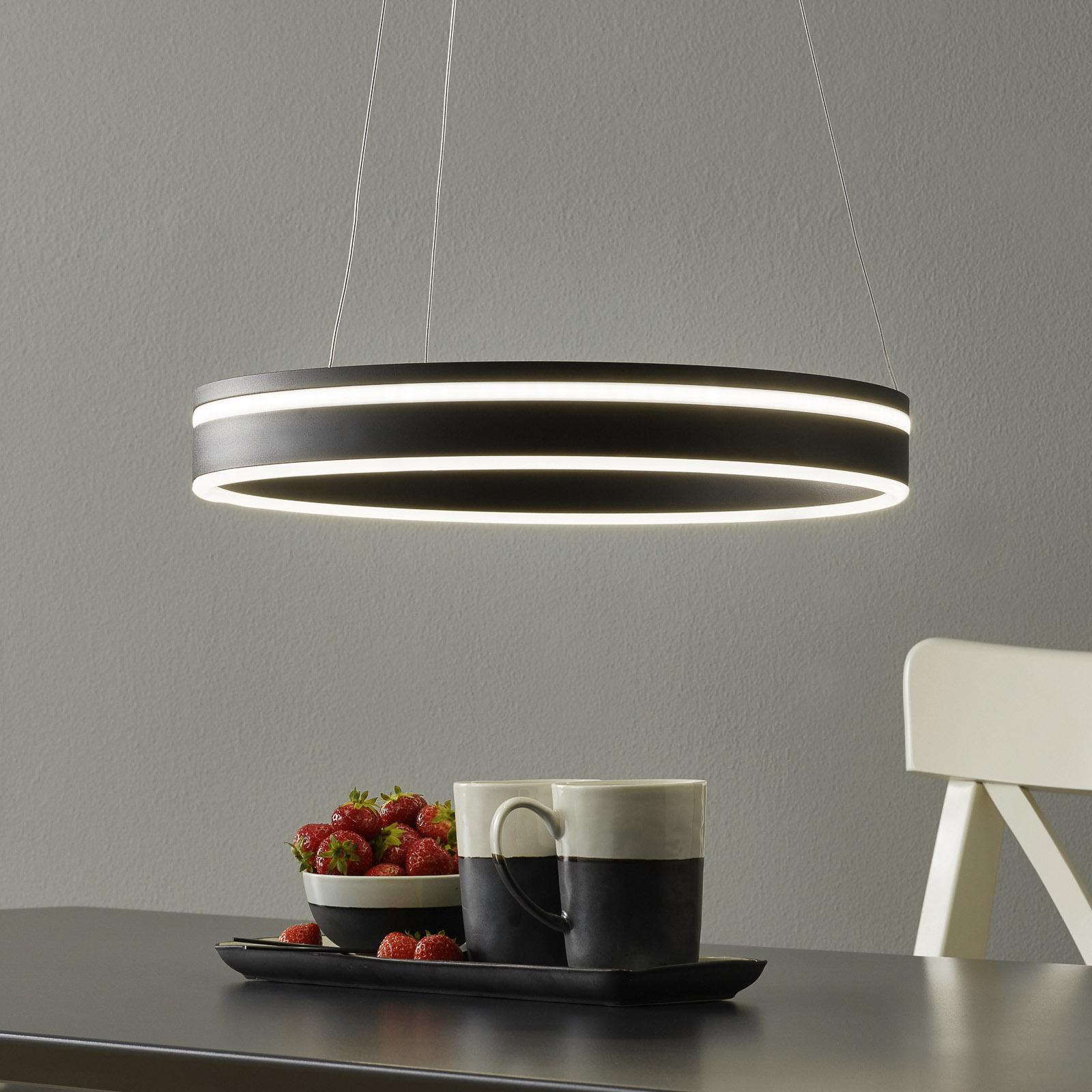 Paul Neuhaus Q-VITO LED hanglamp 40cm antraciet