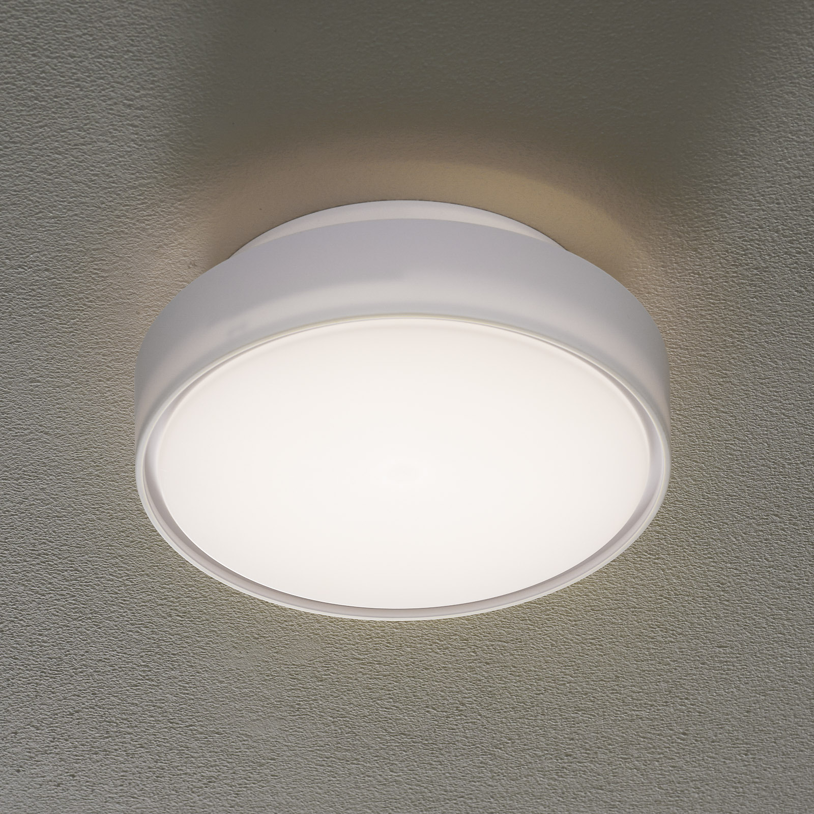 LED-taklampe Hatton IP65 25 cm