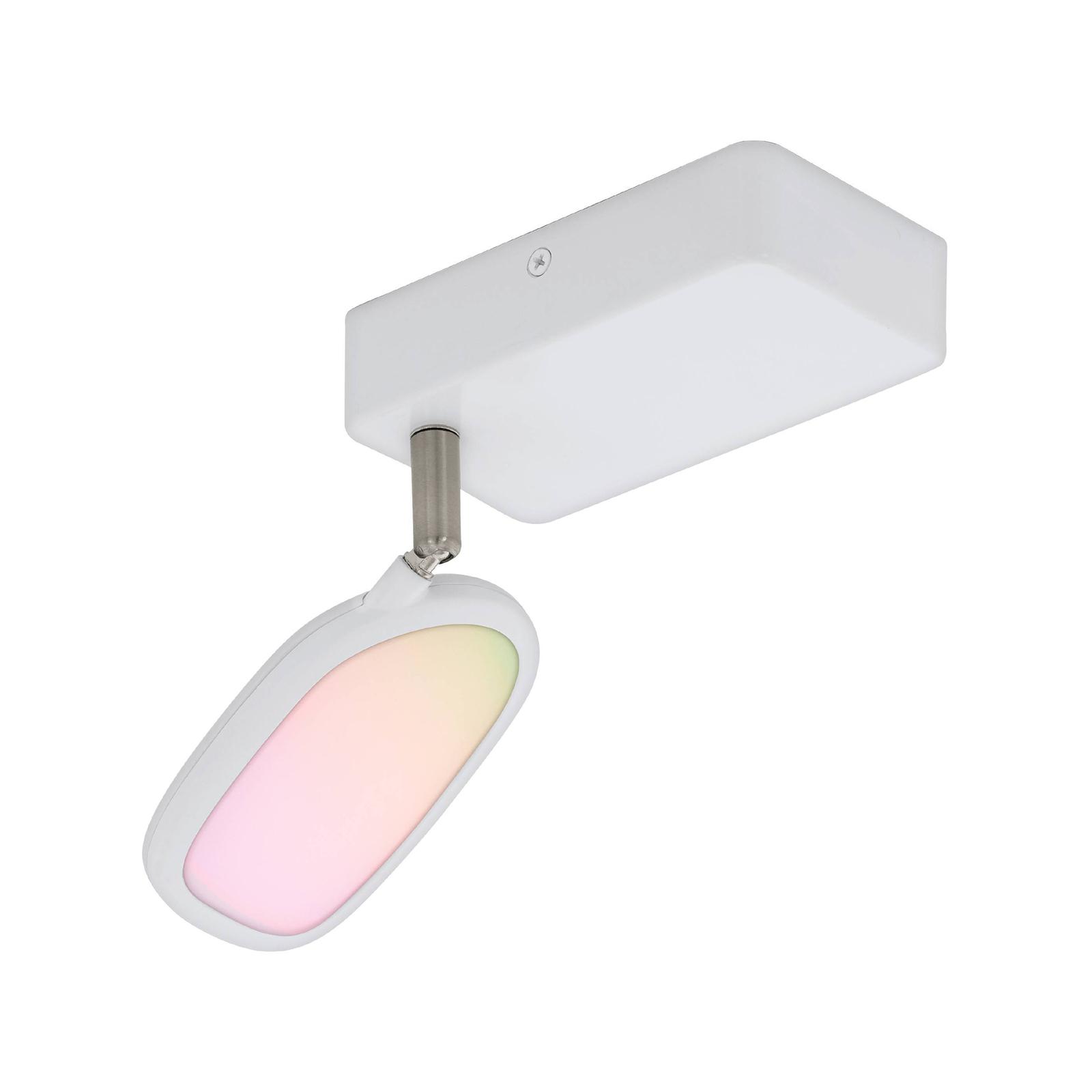 EGLO connect Palombare-C LED-loftspot, 1 lyskilde
