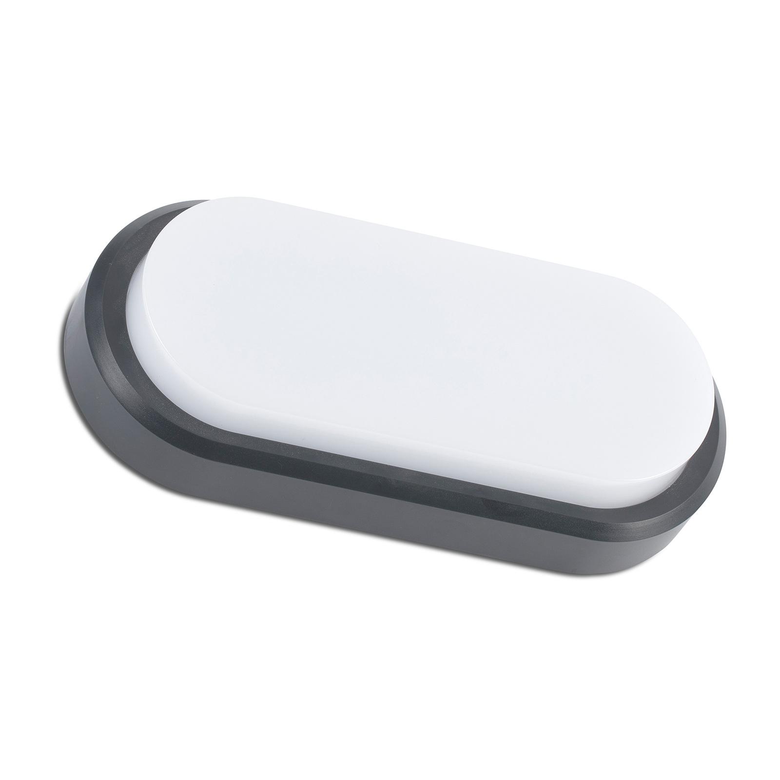 Utendørs LED-vegglampe Fred XL IK10, mørkegrå/hvit