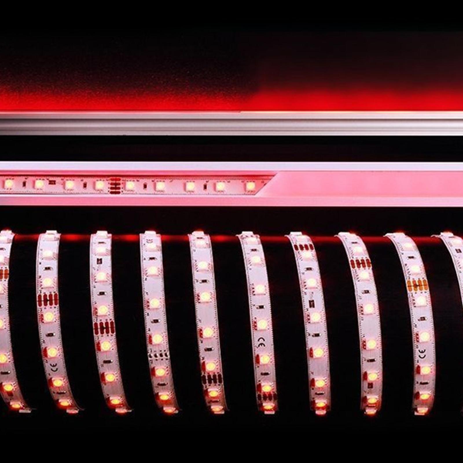 Strip LED flessibile 5m 70W 450-630nm 3.000K