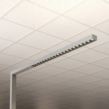 LED-Office-Stehlampe Laris, silber, 3.000-6.000 K