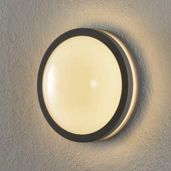 EGLO connect Locana-C LED buiten wandlamp
