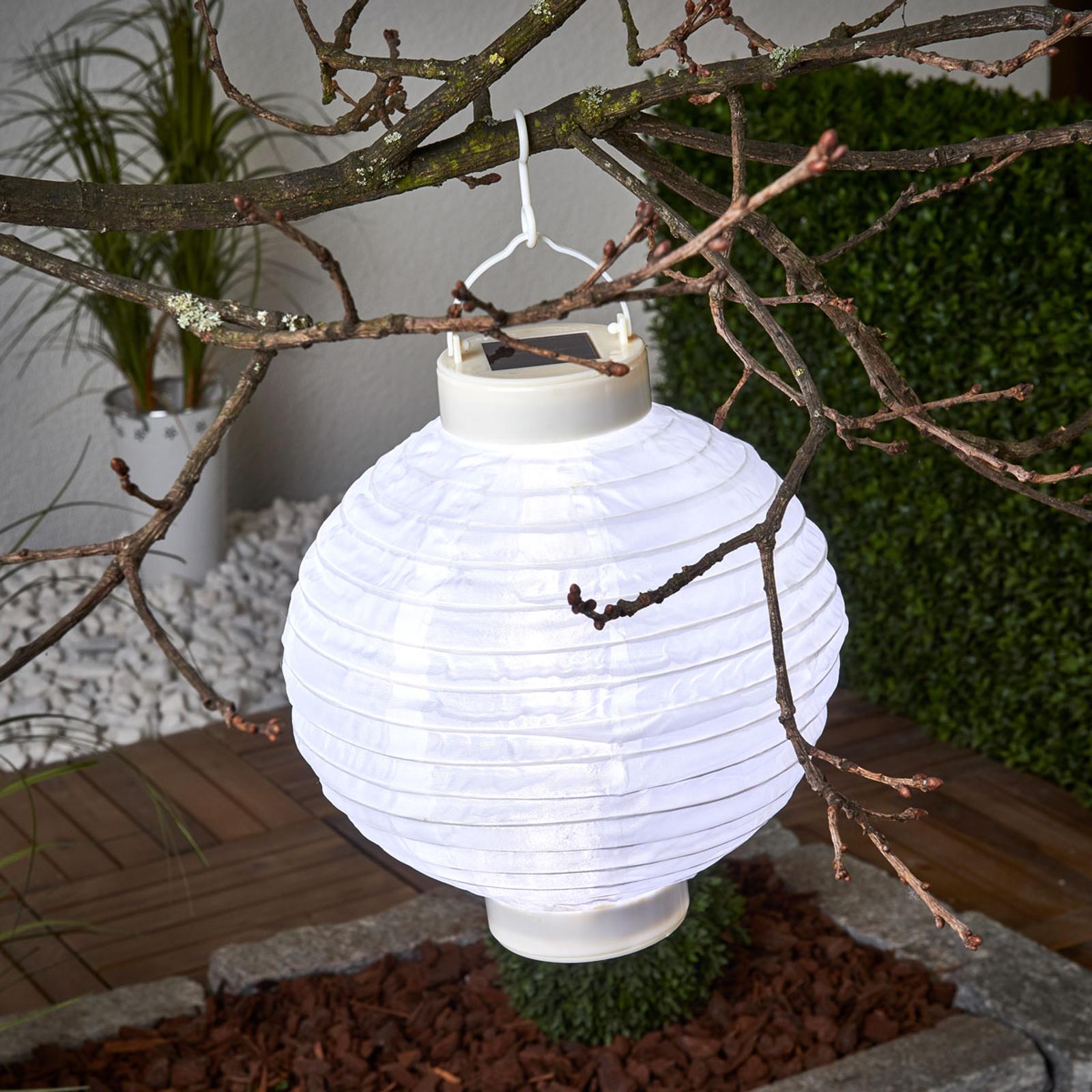 LED solcelle-lampion Jerrit 20 cm, hvid