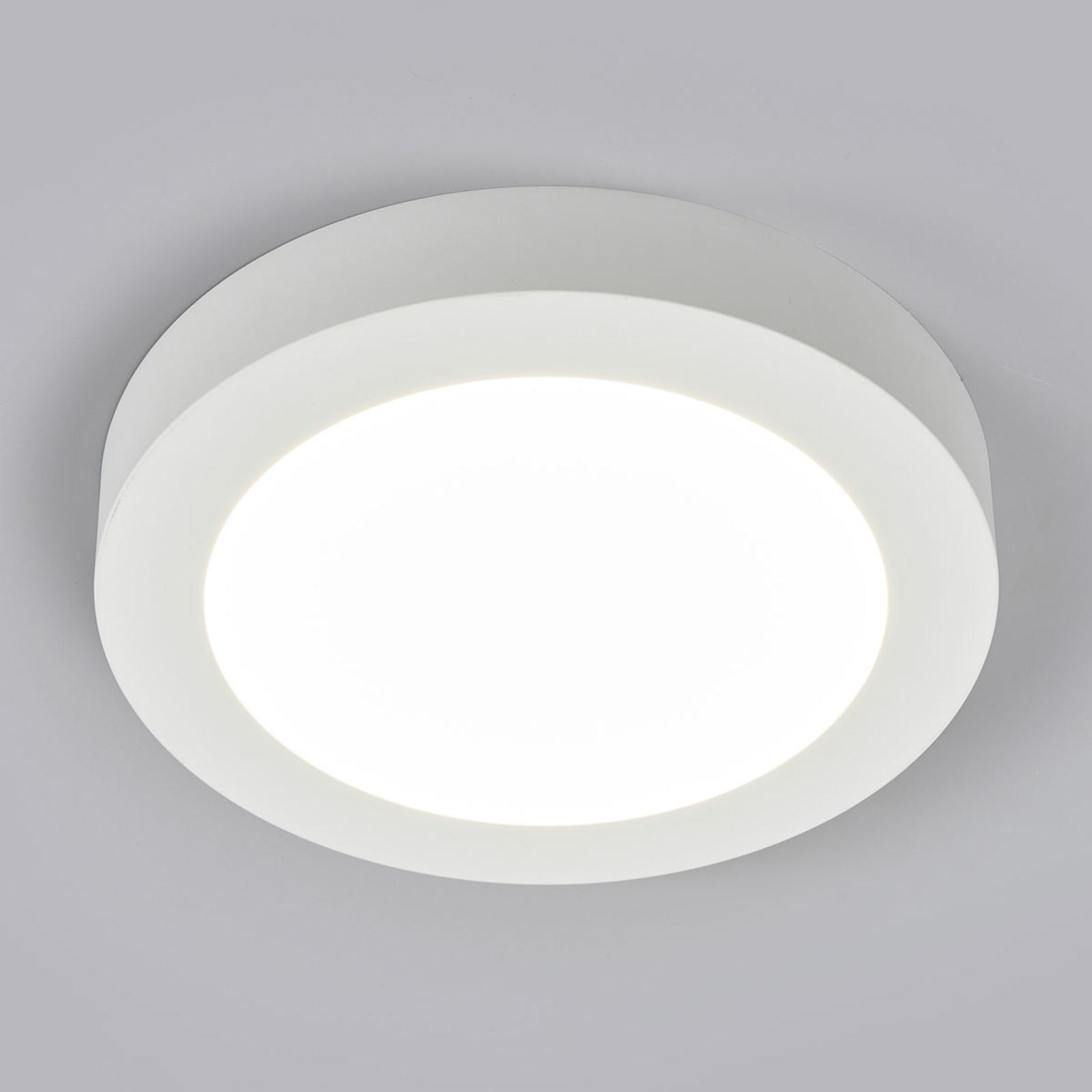 LED plafondlamp Marlo wit 4.000K rond 25,2 cm