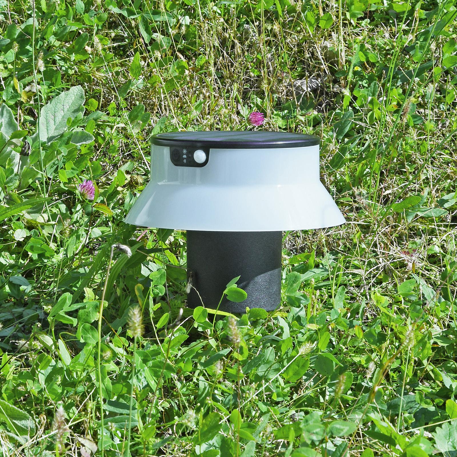 LED-Solarleuchte Felice schwarz CCT mit Erdspieß
