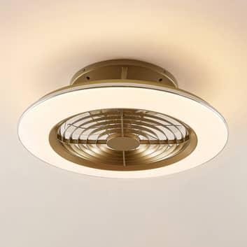 Arcchio Fenio ventilador de techo LED con luz, oro