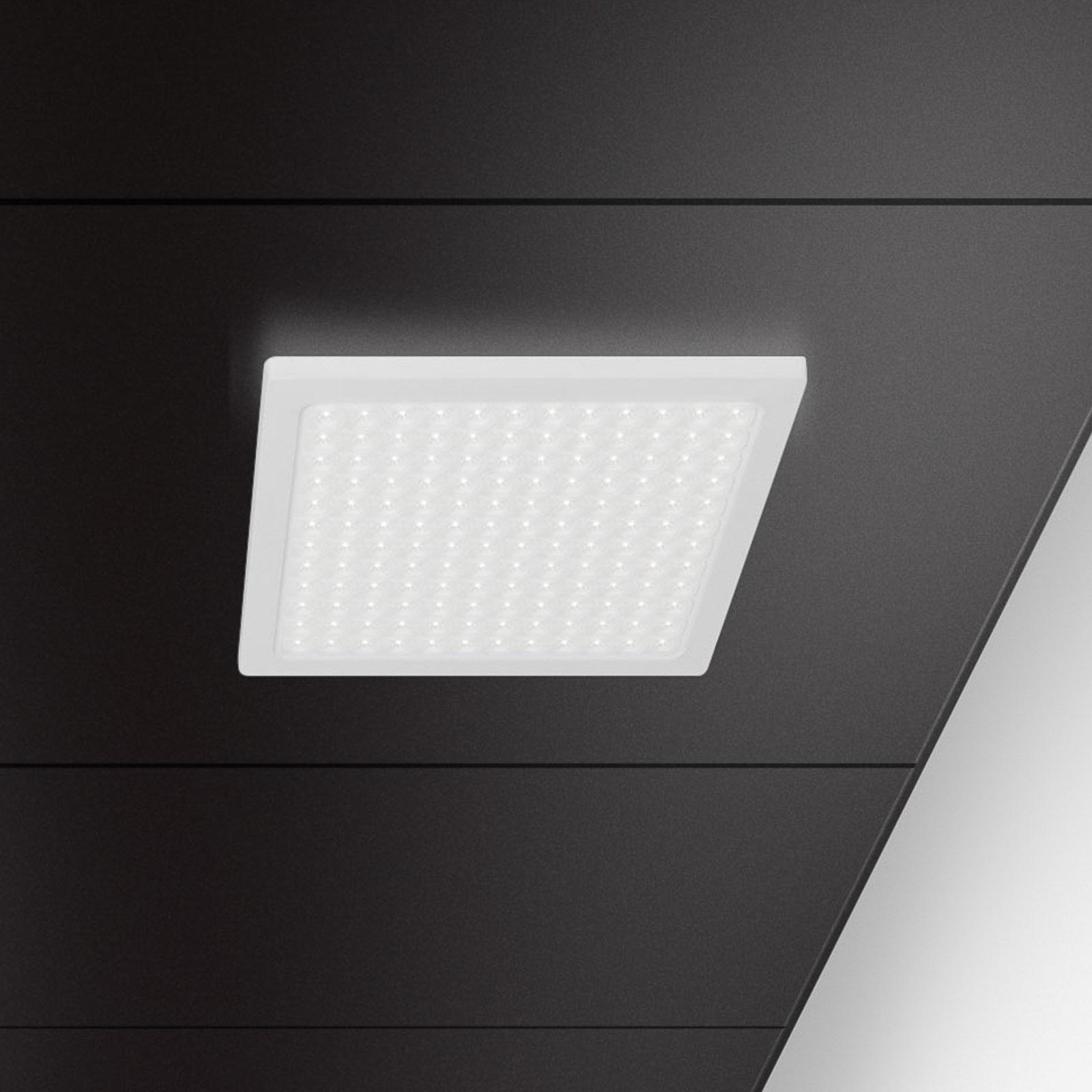 Regent Dime Office lampa sufitowa 63cm 43W