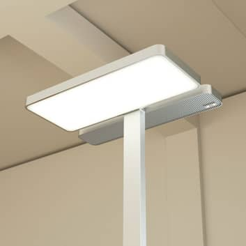 Kontor LED gulvlampe Aila, dagslyssensor 4.000 K