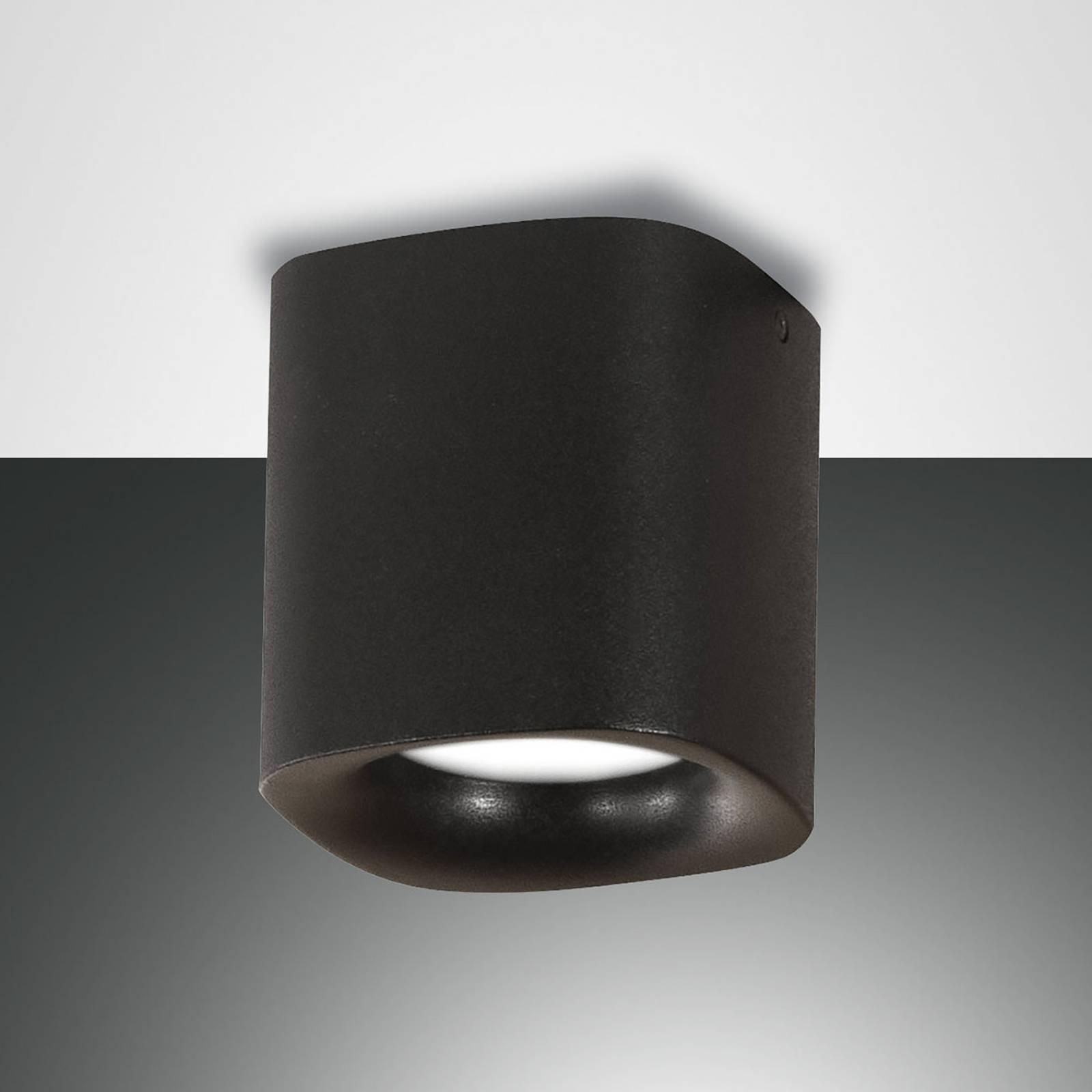 Plafondlamp Smooth, 1-lamp, zwart, IP44