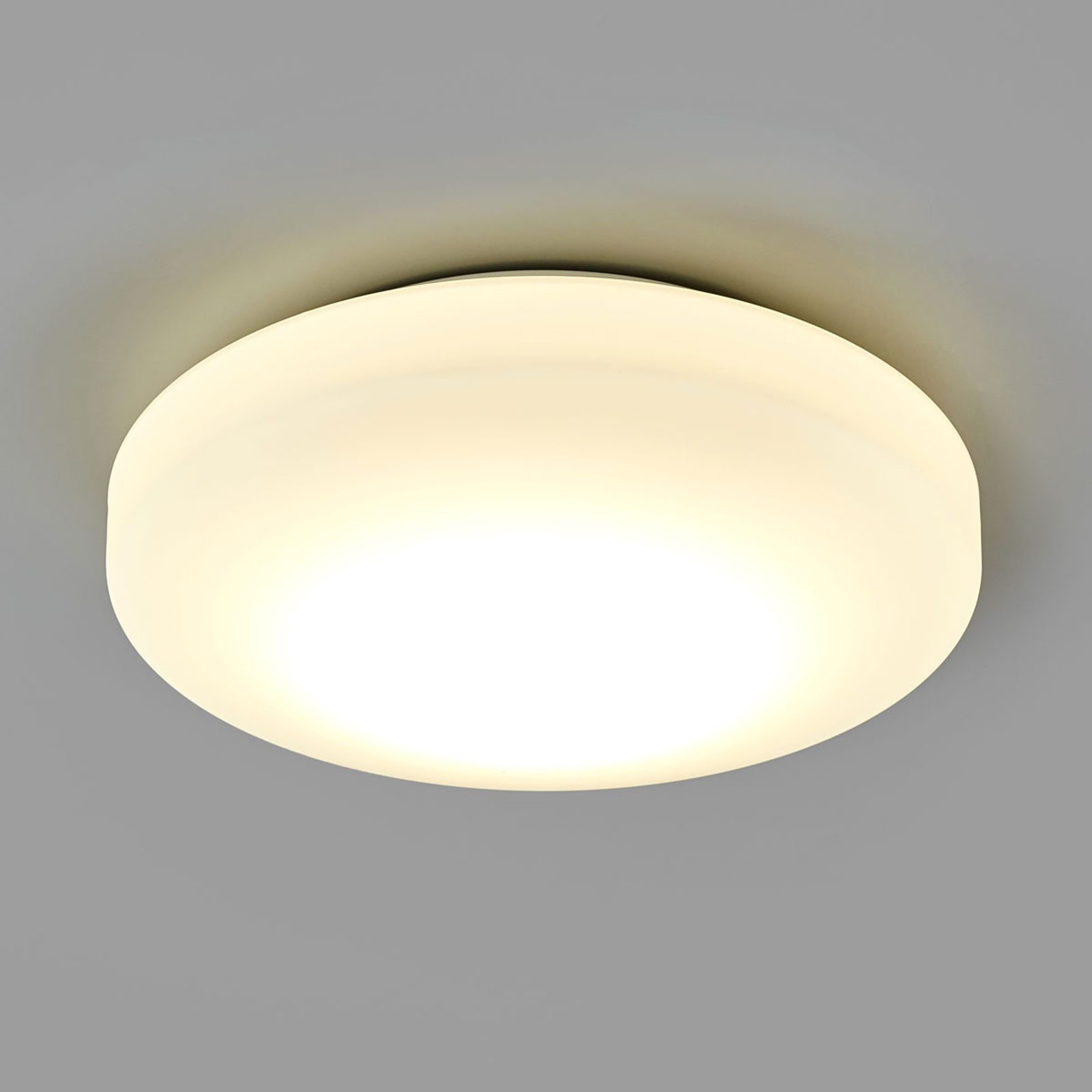 LED-loftlampe til badeværelset Malte af opalglas