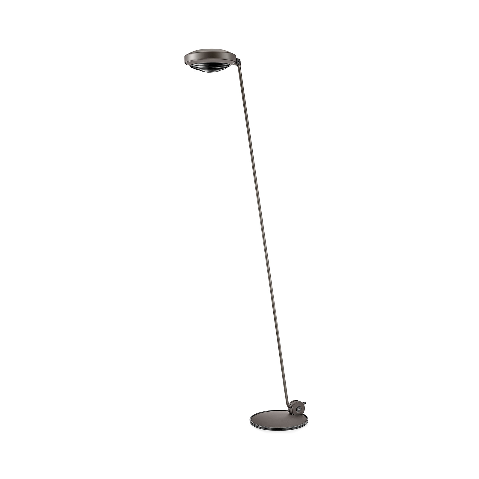 Lumina Elle 1 LED-Stehlampe H 180cm 3.000K bronze