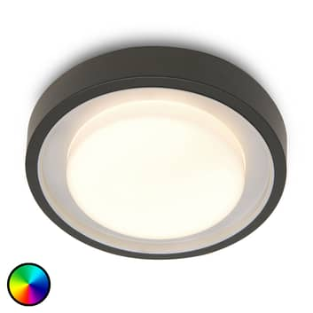 WiZ lampa zewnętrzna LED Origo