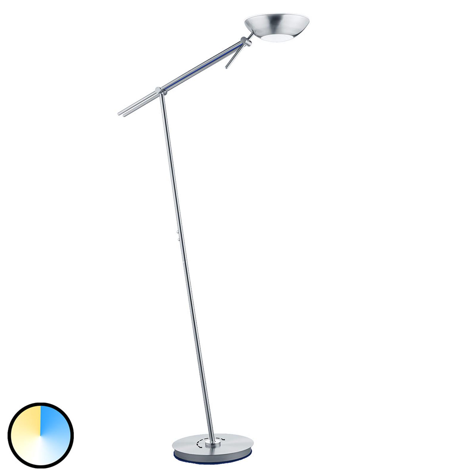 B-Leuchten Reus vloerlamp, varieerbaar
