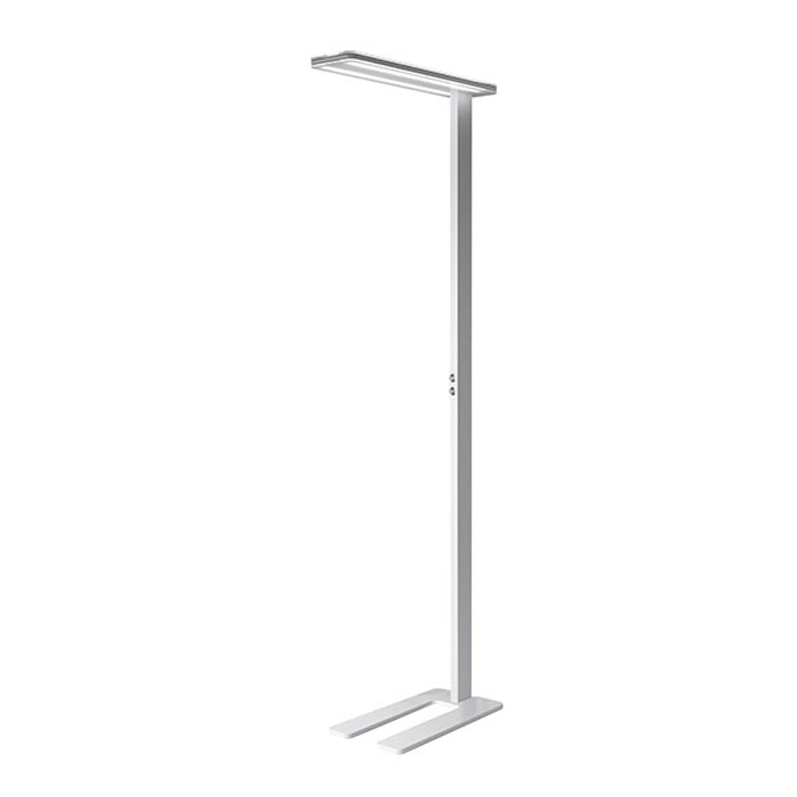 LED vloerlamp Trentino II, dimbaar, wit