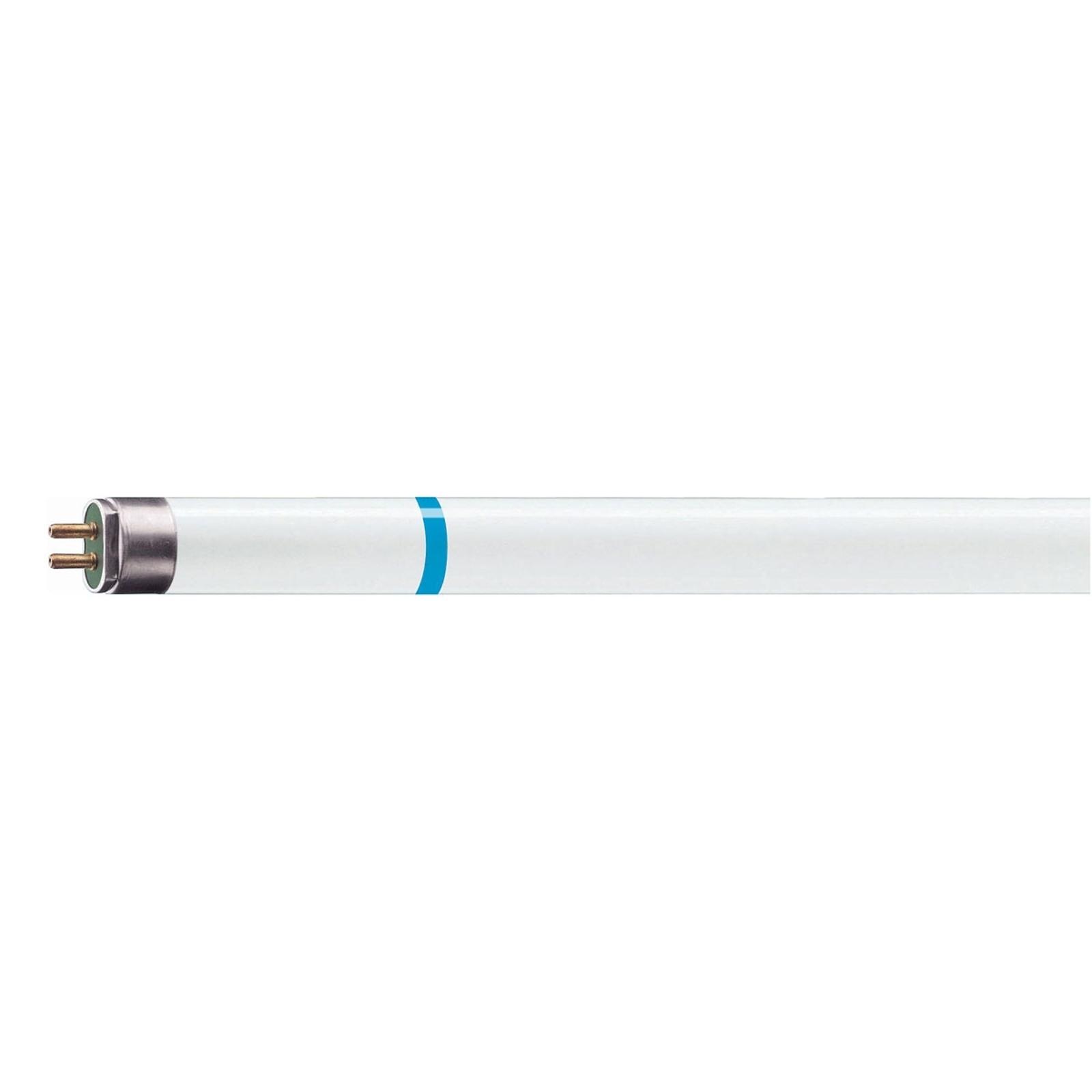 G5 T5 49W 840 lampadina fluorescenza TL5 HE Secura
