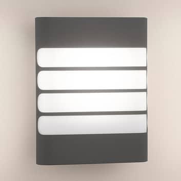 Philips Raccoon LED-Außenwandleuchte anthrazit