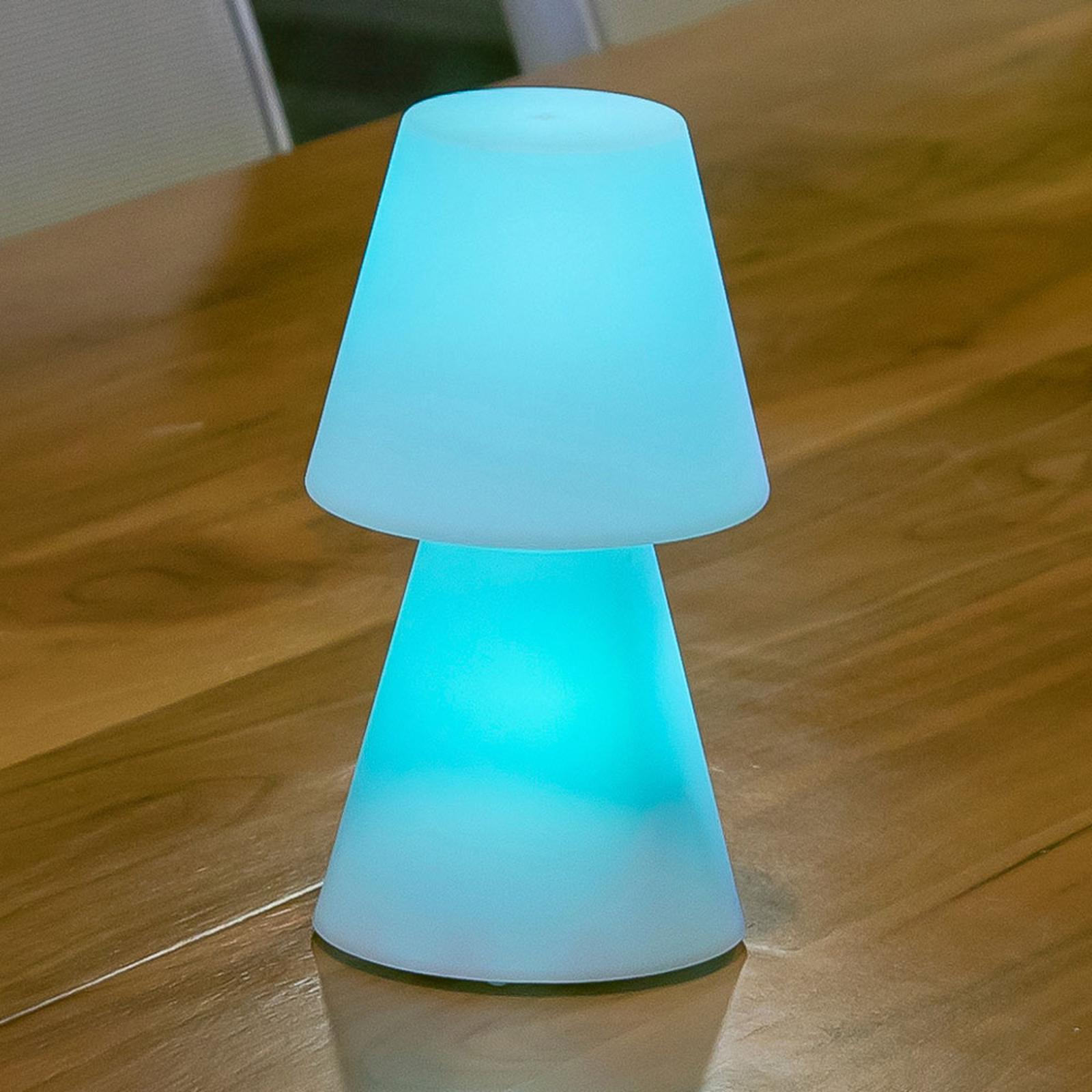 Newgarden Lola 20 LED-Tischlampe mit Akku