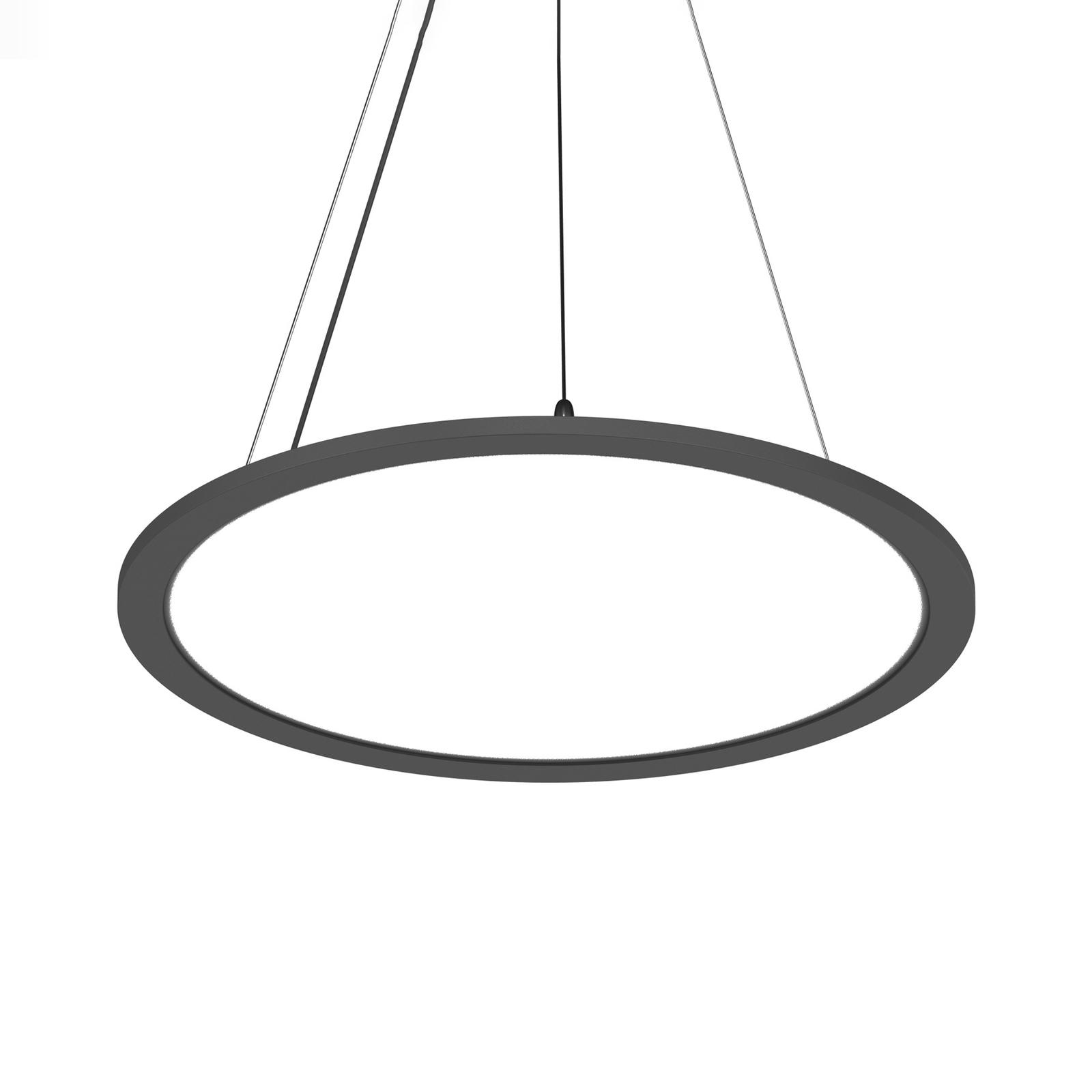 Prios Palino LED-Hängeleuchte, 40 cm, in Schwarz