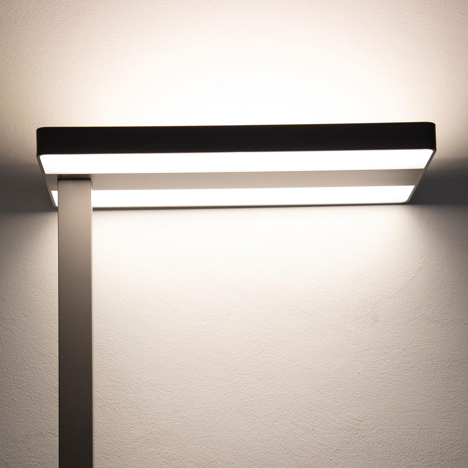 Lampa stojąca LED MAULjaval ze stopą zaciskową