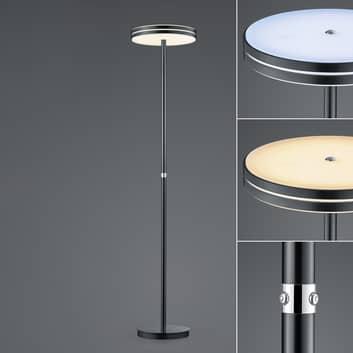 BANKAMP Gem LED-gulvlampe, dæmper, antracit