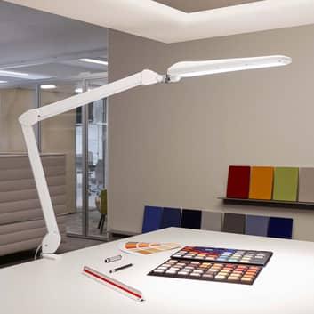 Lampa stołowa LED MAULcraft ze stopą zaciskową