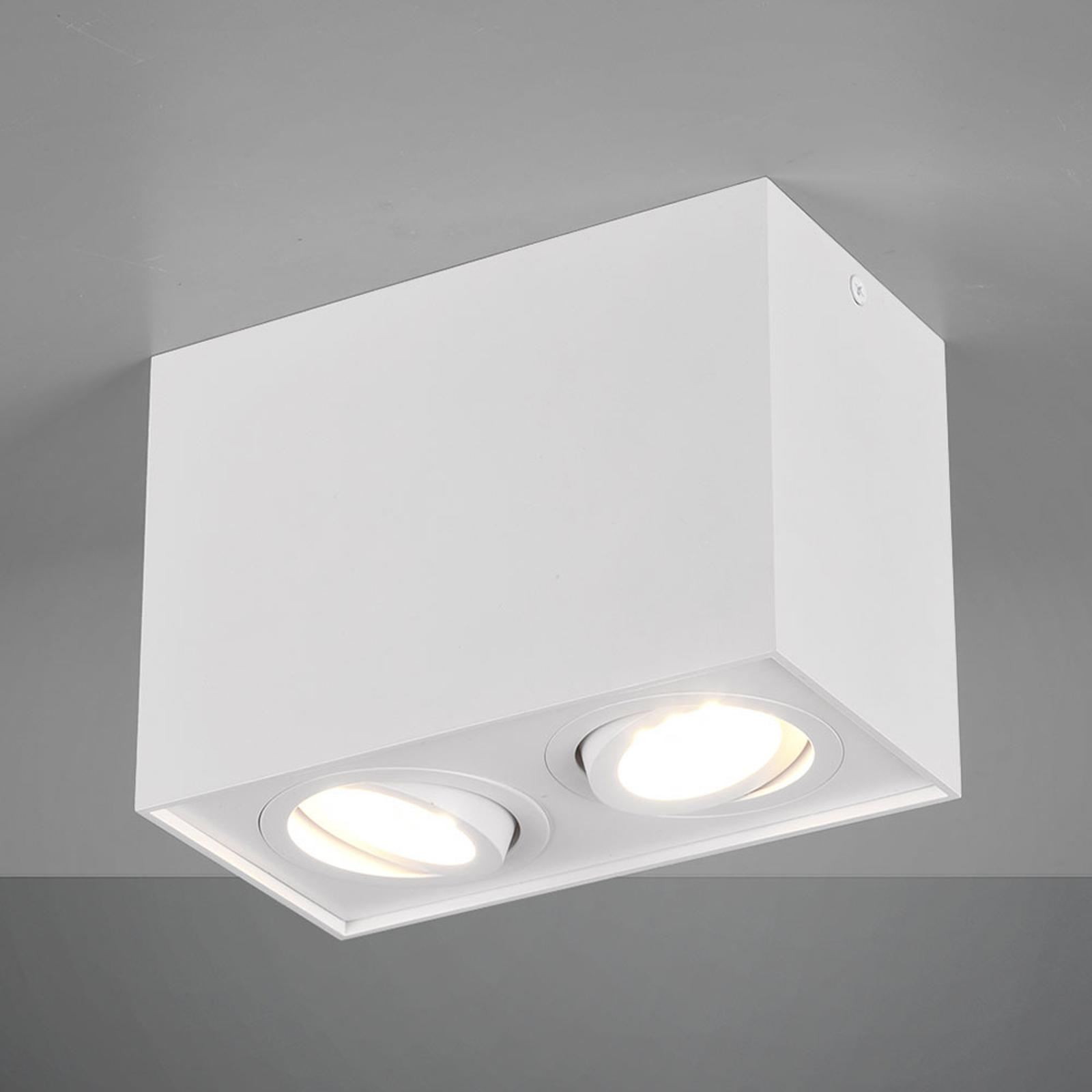 Plafondlamp Biscuit, 2-lamps, wit