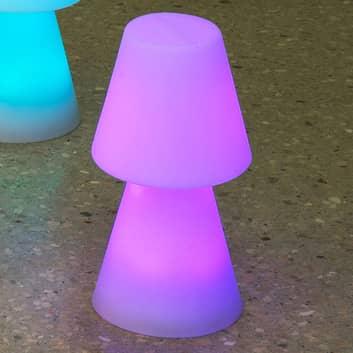 Newgarden Lola 30 lampada LED da tavolo con accu