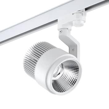 LEDS-C4 Action AC spot LED do szyny WN